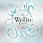 AD_Wedo_versao1